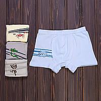 Трусы боксеры мальчиковые с принтом Zoo Doni Турция 8/9-7571WAH (10 ед. в упаковке)