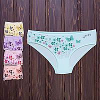 Трусы детские для девочки с цветочным принтом Donella Турция 10/11-4171WKC (10 ед. в упаковке)