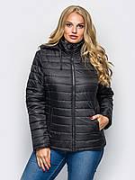 Демисезонные куртки больших размеров в Харькове. Сравнить цены ... cad53c4c668