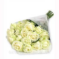Роза белая 50см 19шт