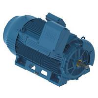 Высоковольтный двигатель W50 450J/H 630 кВт 3000 об/мин. B3R 6000В