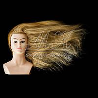 Учебная голова 70 см, человеческий волос, золотистый