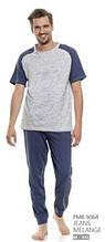 Пижама мужская хлопковая Dobra Nocka 9064