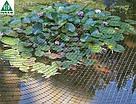 Сітка для вольєрів AVIARY TENAX 1,5х200 м (осередок 15х18мм), фото 3
