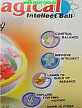 Магічний куля-головоломка (куля-лабіринт)Magical Intellect Ball, фото 5