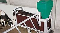 Автоматы для раздачи концентрированного корма DairyFeed J 1000