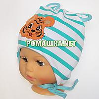 Детская трикотажная шапочка р. 46-48 на завязках двойная отлично тянется ТМ Аника 3277 Салатовый 46