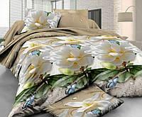 Полуторное постельное белье с простыней на резинке 90/200/25 Британи, ранфорс