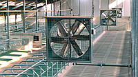 Циркуляционные вентиляторы для коровника