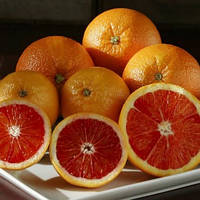 Апельсин Кара-Кара (Citrus sinensis Cara Cara navel orange) до 20 см. Комнатный