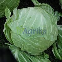 Семена капусты б/к Ирида F1 Аgri Saaten от 1 000 шт