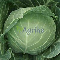 Семена капусты б/к Компас F1 Takii Seed от 10 г