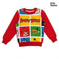 Теплая кофта Angry Birds для мальчика. 95 см