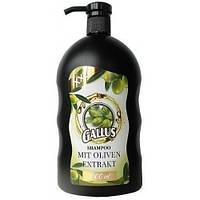 Шампунь для волос Gallus Oliven Extrakt  для сухих волос 1л