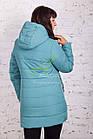 Зимняя женская куртка 2017-2018 оптом - (модель кт-162), фото 6