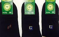 Носки мужские демисезонные «Житомир» 29 размер, чёрные