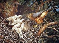 """Алмазная мозаика """"Гнездо сокола"""", картина стразами 40*30см"""