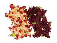 Цветочки декоративные Гардении бордовые + сливочно-бордовые, бумажные, 7см, 4 шт/уп