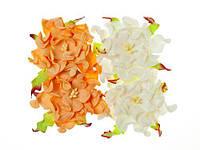Цветочки декоративные Гардении белые + персиковые, бумажные, 7см, 4 шт/уп