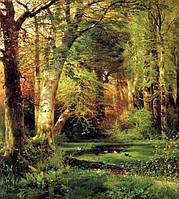 """Алмазная мозаика """"Сказочный лес"""", картина стразами 40*50см"""