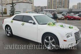 Эксклюзивное украшение на авто (2)