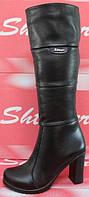 Сапоги зимние женские на каблуке, ботфорты женские зима от производителя модель СТС10К