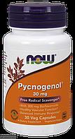 Пікногенол, Пікногенол, Now Foods, 30 мг, 30 капсул