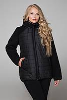 Женская черная куртка большого размера еврозима CR-10557 Caramella 52-60 размеры
