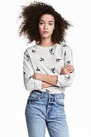Свитшот H&M с птичками, в наличии XS S M , фото 1