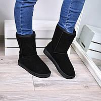 Угги женские UGG натуральная замша 3601, зимняя обувь