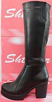 Высокие зимние сапоги женские на каблуке, сапоги женские зима от производителя модель СТС17К