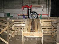 Линия для предпродажной очистки капусты. Лінія для передпродажної очистки капусти., фото 1