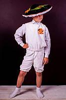 Гриб белый прокат карнавального костюма