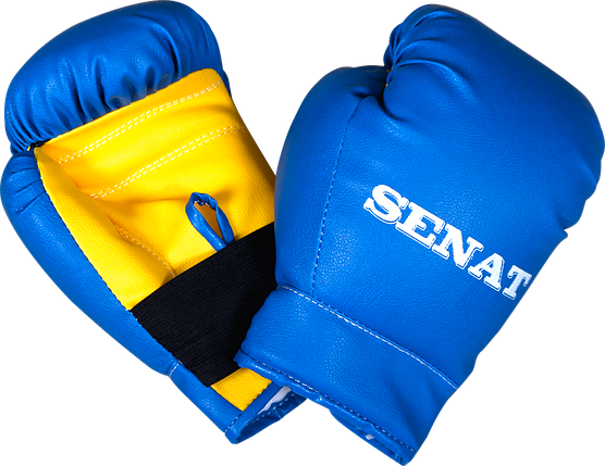 Набор юного боксера, сине-желтый, 1482-bl/yllw, фото 2