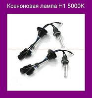Ксеноновая лампа H1 5000K!Опт