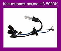 Ксеноновая лампа H3 5000K!Акция