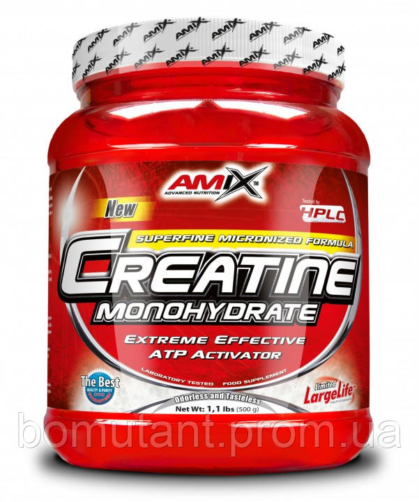 Creatine Monohydrate 300 гр AMIX