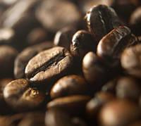 Свежеобжаренный кофе в зернах Восточный Тимор (ОРИГИНАЛ), арабика Gardman (Гардман) , фото 1