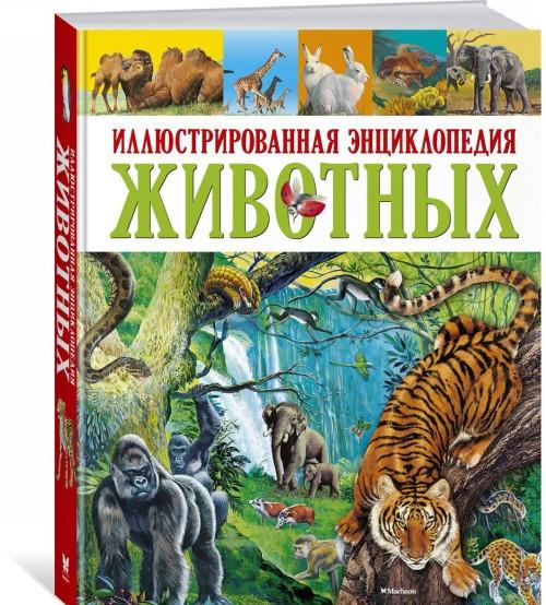 Обучающая книга Азбукварик Слон купил велосипед 9785402005938