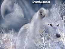 Алмазная вышивка Снежный волк 5D