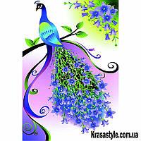 Алмазная вышивка Павлин с синим хвостом