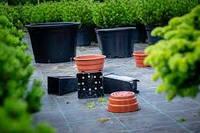 Горщики для розсади декоративних та плодових рослин
