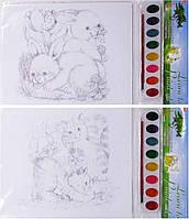 Набор для творчества  8014 A4 раскраска 6л+2л +краски 6цв кисточки mix6