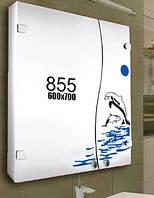 Шкафчик для ванной комнаты 600х700 мм ШК855