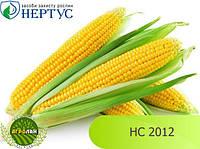 Семена кукурузы НС 2012 (ФАО 220-240) НЕРТУС