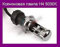 Ксеноновая лампа H4 5000K!Акция