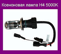 Ксеноновая лампа H4 5000K