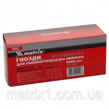 Гвозди для пнев. нейлера, длина - 25 мм, ширина - 1,25 мм, толщина - 1 мм, 5000 шт.// MTX