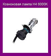 Ксеноновая лампа H4 6000K!Опт