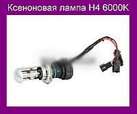 Ксеноновая лампа H4 6000K!Акция